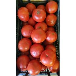 Tomates - Colis de 10 kg