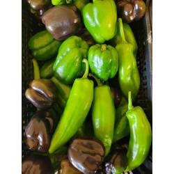 Poivrons - Colis de 1 kg